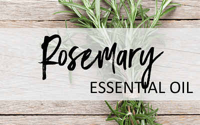 Rosemary Essential Oil – Uses & Benefits